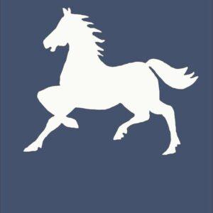 Cavalieri Baldosa unitaria